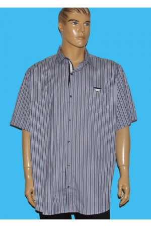 Рубашка Guanto 9619