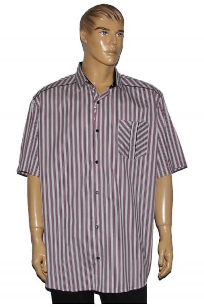 Рубашка Guanto 9621