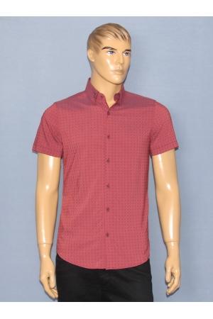 Рубашка Guanto А. 766