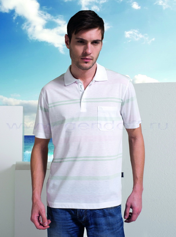 Рубашка поло А. 8077 С купить оптом в Москве